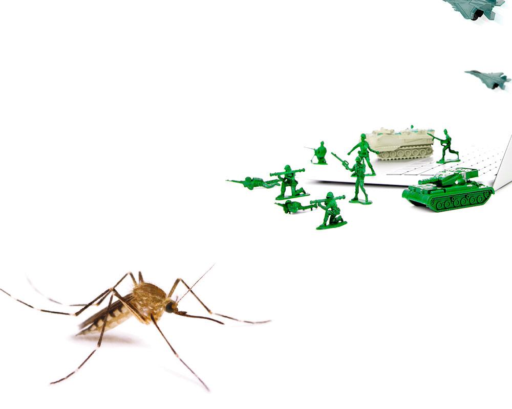 mosquito-tigre-03