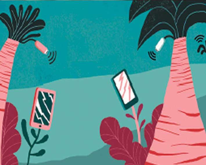 comunicaciones secretas plantas