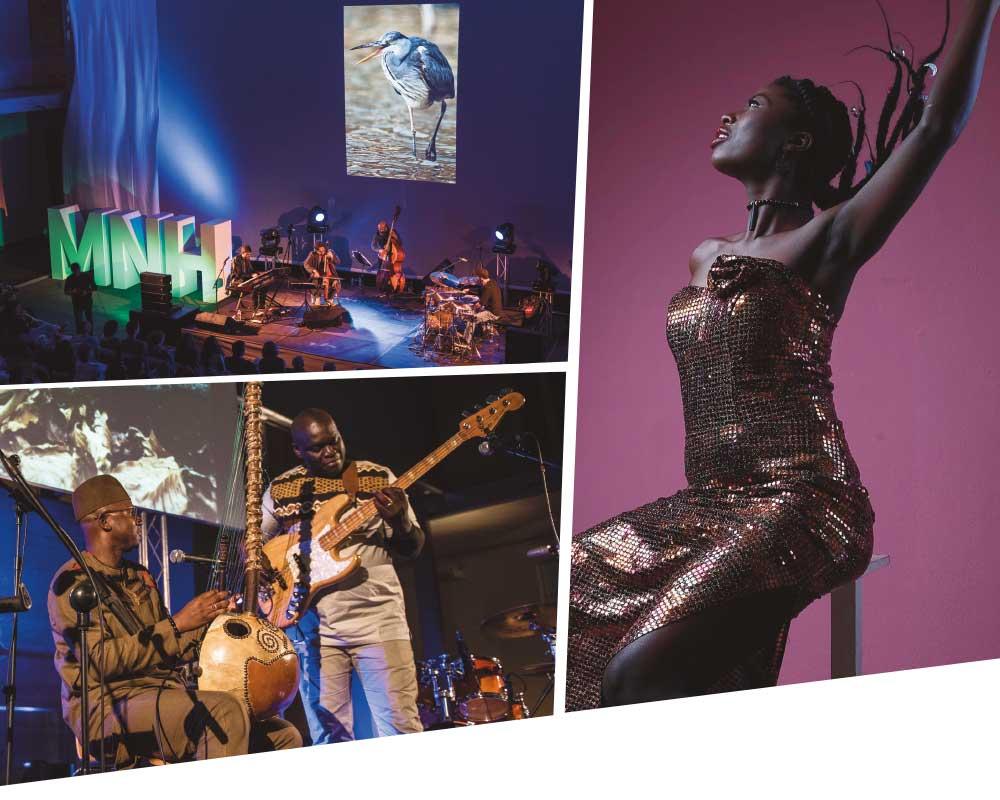 | FOTOS: A la izquierda, Habib Faye Band . A la Derecha Lornoar