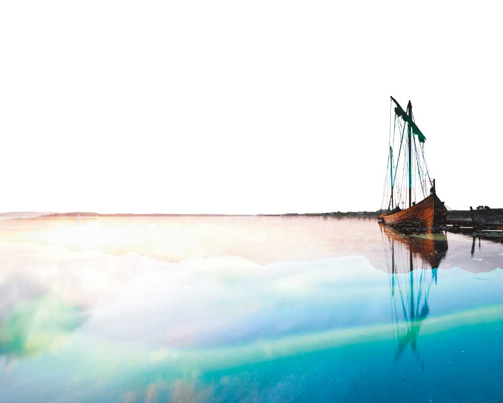 """Vikingos. Guerreros del Norte, Gigantes del Mar"""