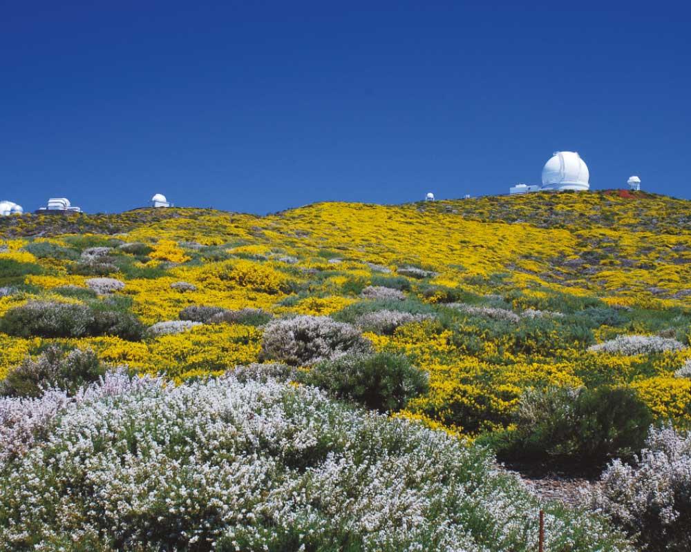 Observatorio Roque de los Muchachos | Saúl Santos