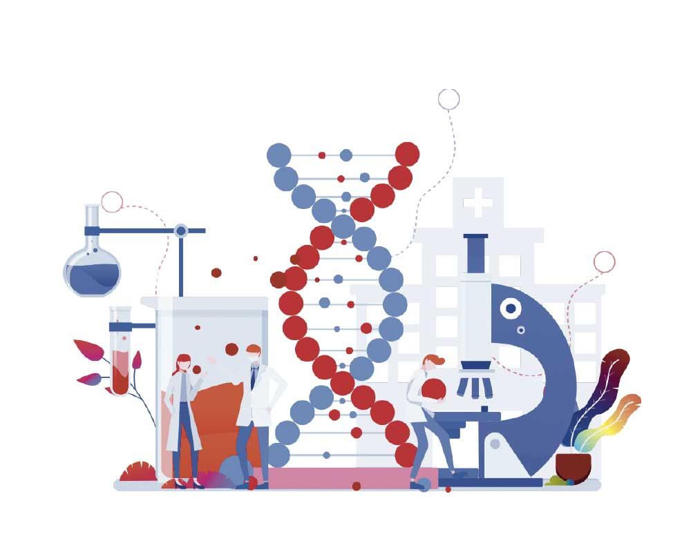 Secuencian el genoma de una araña BES MAGAZINE 23