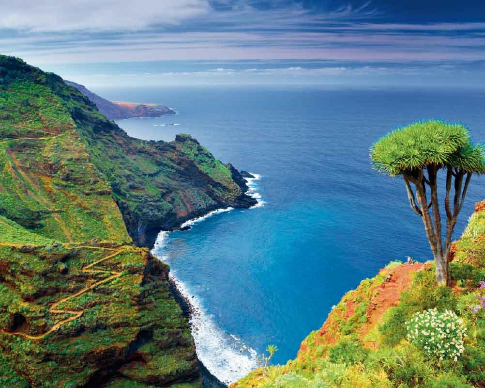 La Palma inspira naturaleza